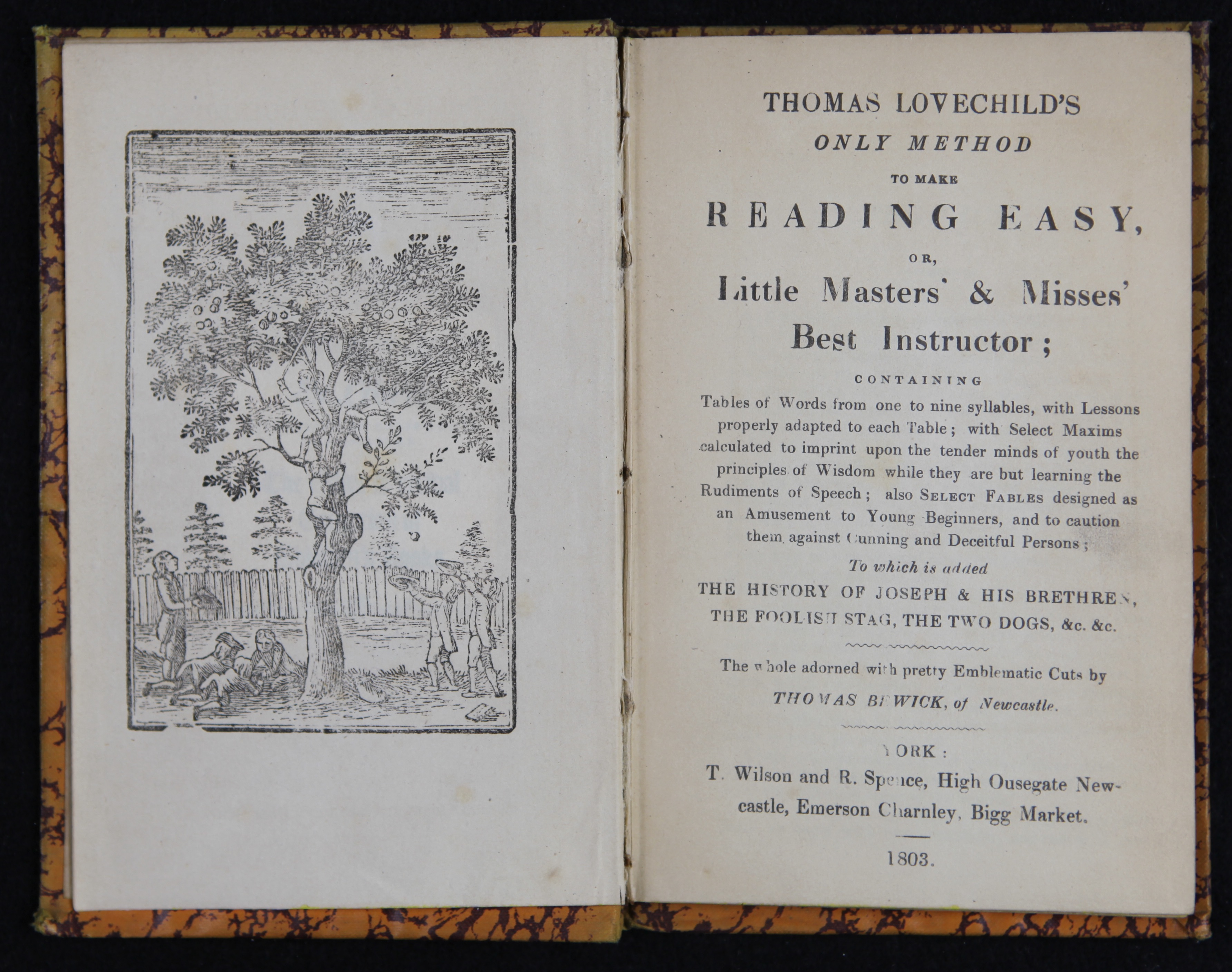 History of the book chapter 9 industrialization of print r wilson and r spence york 1803 cbc pe1120 h37t 1803 literacy rates grew in britain and north america in the 19th century fandeluxe Images